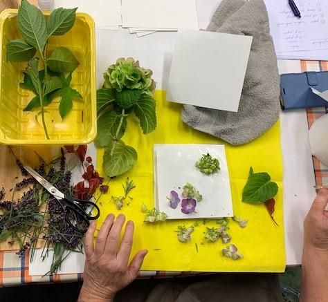 Ecoprint 08/21